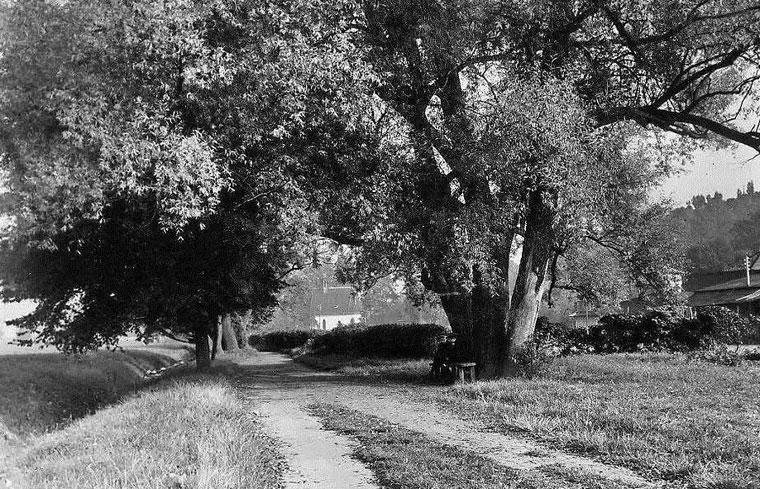 Finkenauer Weg