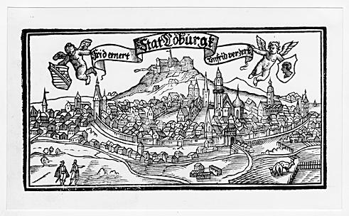 Ansicht der Stadt und Veste Coburg